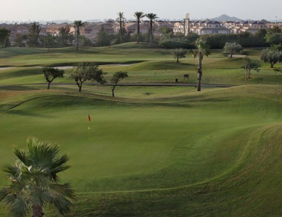 The Roda Golf